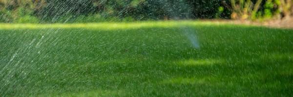 irrigating-lawn-DSC00733