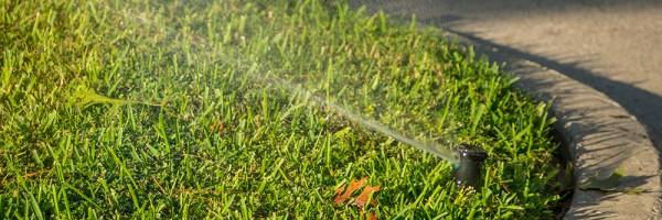 irrigating-lawn-DSC00732