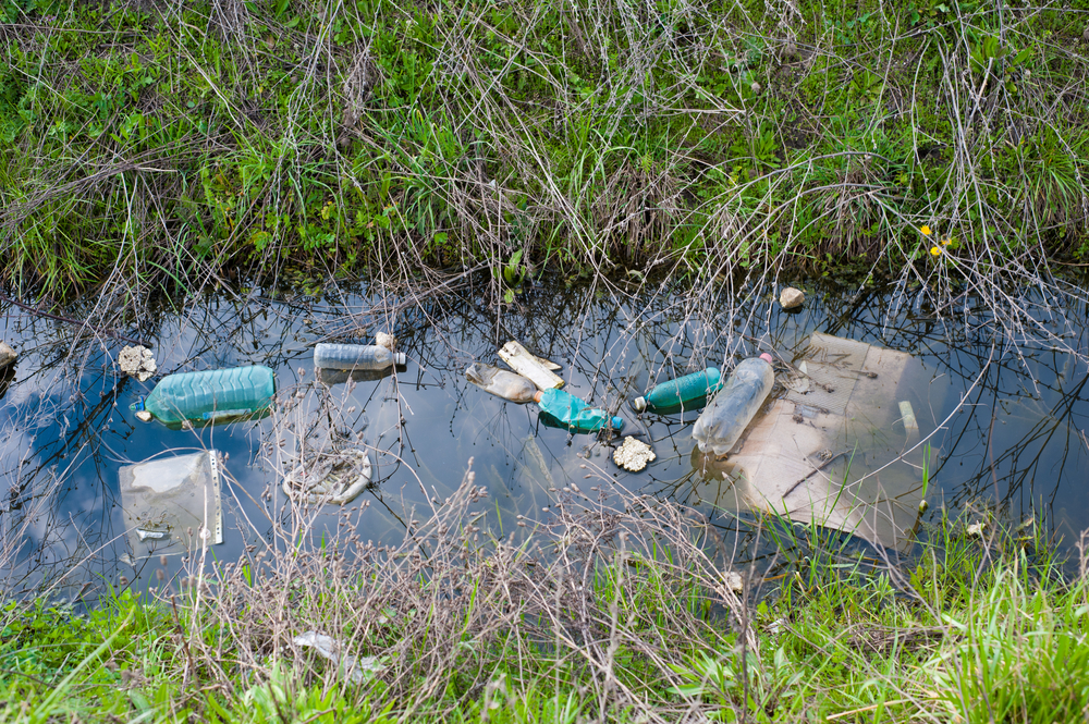 Stormwater Runoff Pollution : Things you can do to prevent stormwater runoff