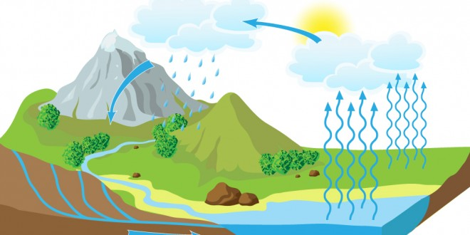 Do you know how the Water Cycle works?
