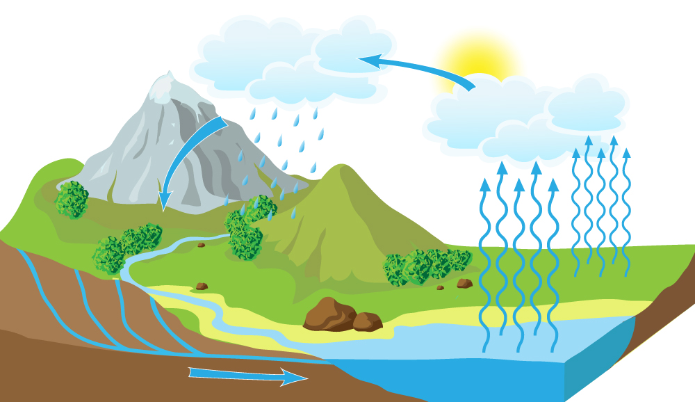Image result for water cycle